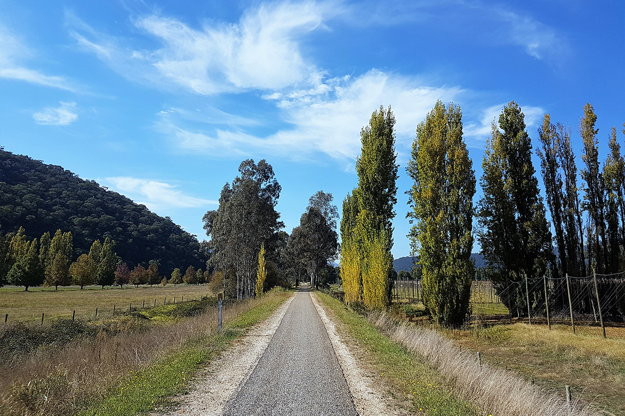Murray to Mountain Rail Trail